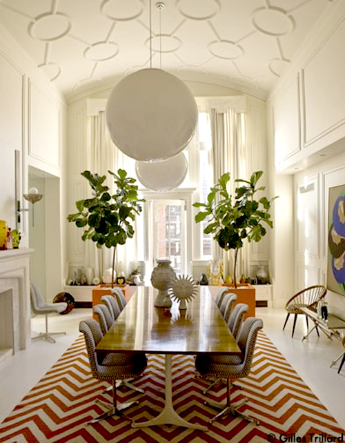 Fiddle me this fiddle leaf figs erika brechtel for Elle decoration france