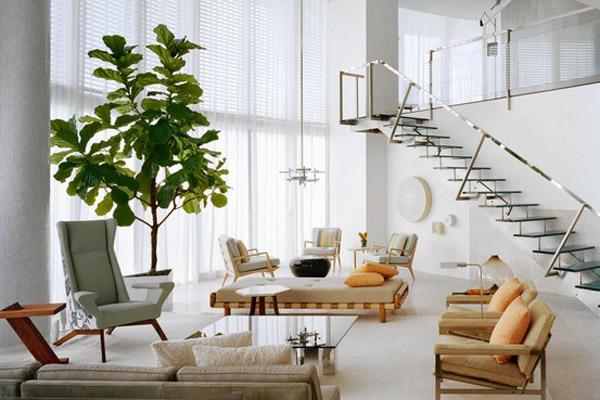 Home Decor Fiddle Leaf Fig Tree Via