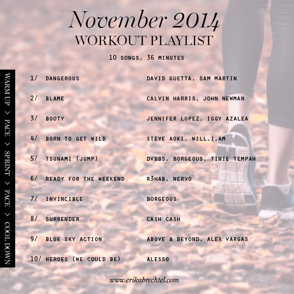workout playlist November 2014 Erika Brechtel spotify