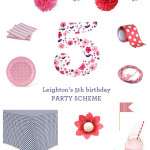 small shop Erika Brechtel girls 5th birthday party scheme navy pink red
