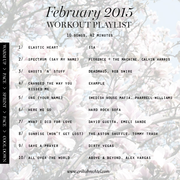 workout playlist February 2015 Erika Brechtel spotify