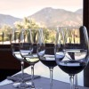 NAPA VALLEY INSIDER Wine Tasting Tips