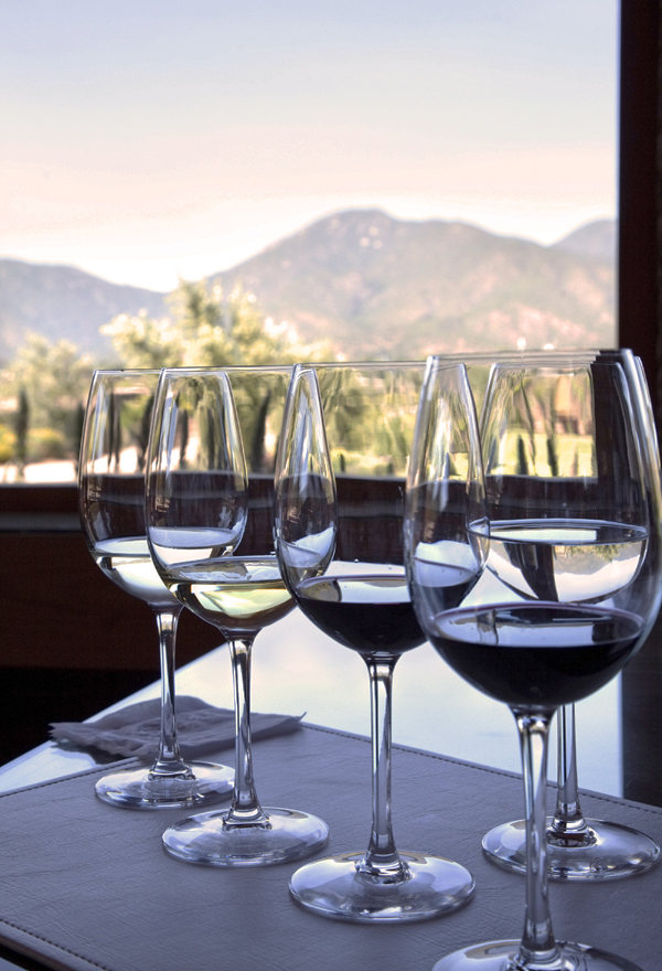 Napa-Insider-Wine-Tasting-Tips