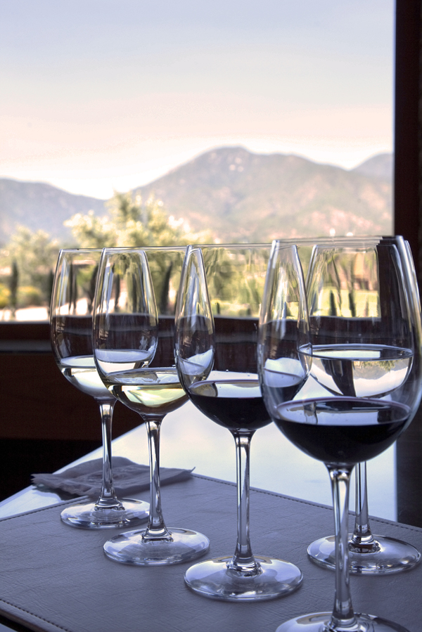 Napa Wine Tasting Tips