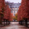 PARIS We Love You (22 Ways)
