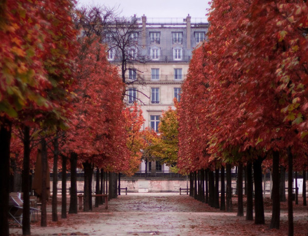 Paris autumn walkway via discoverwalks