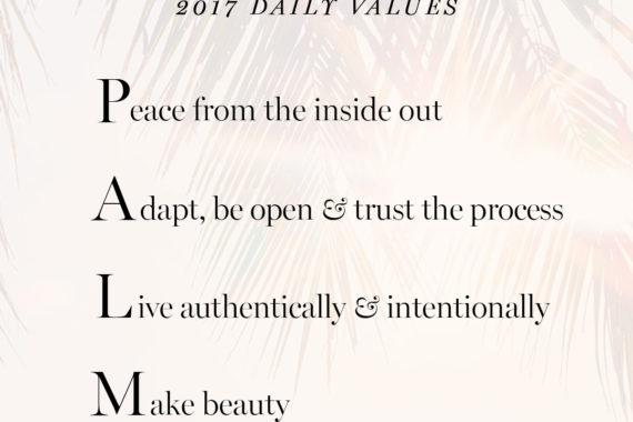 2017 daily personal core values Erika Brechtel PALM
