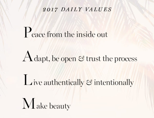 2017 daily personal core values Erika Brechtel PALM