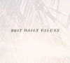 2017 daily personal core values Erika Brechtel PALM feat